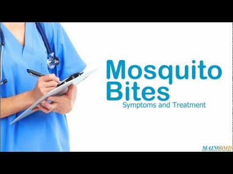 Mosquito Bites: Symptoms and Treatment