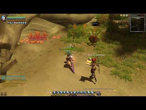 Dragon nest sea 95 cap , gold goblin not giving gold