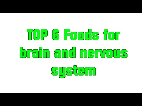 Top 6 Foods for brain and nervous system