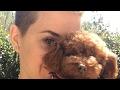 Katy Perry - 🍒 Bon Appétit Music Video Chat 🍒