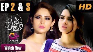 Dil Nawaz - Episode 2 & 3 (Double Episode) | A Plus ᴴᴰ Drama | Neelam Muneer, Aijaz Aslam,Minal Khan