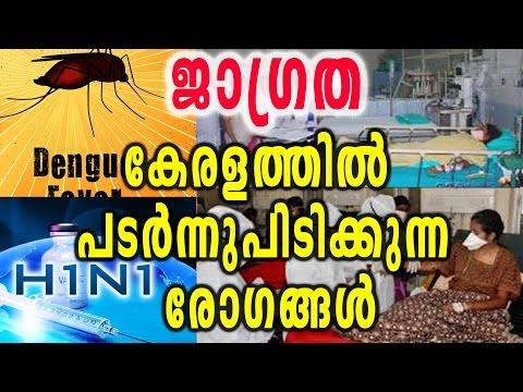 Communicable Diseases Spreading Through Kerala | Oneindia Malayalam