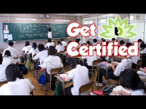 Do I Need A TESOL / TEFL Certification To Teach English Abroad