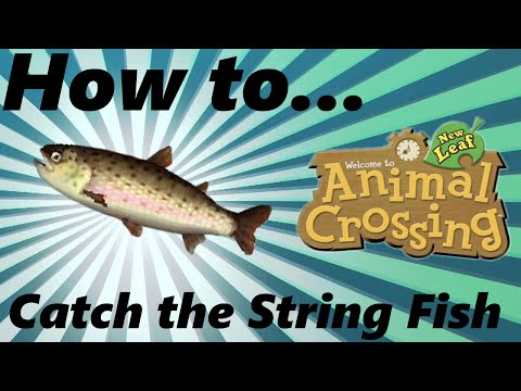 How to: Catch the String Fish