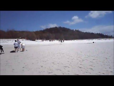 Travel to White-haven Beach Whitsunday Island in Australia 2016