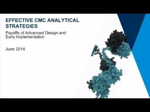Therapeutic Antibodies and Effective CMC Analytical Strategies