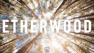 Etherwood - We Are Ever Changing