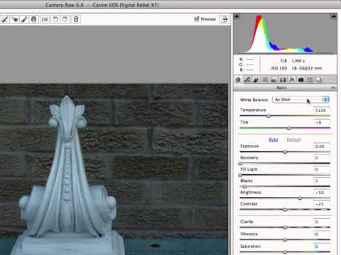Color Temperature  (White Balance), and How To Adjust It With Camera RAW