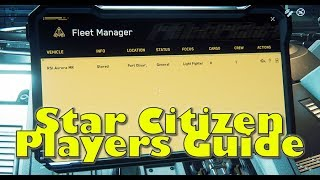 Star Citizen | 3.0 Players Guide - ep1 Ship Request Screen
