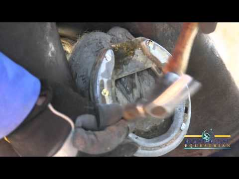 How to Replace a Horse Shoe