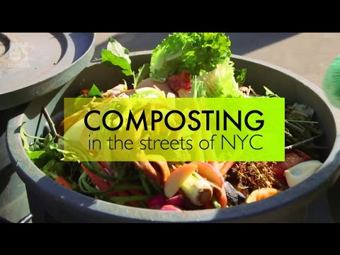 Composting 101: How to compost in NYC