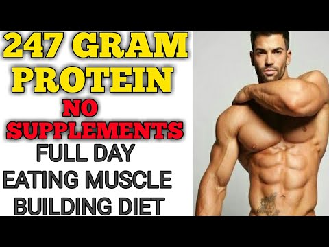 full day diet plan for muscle building high protein without any supplements