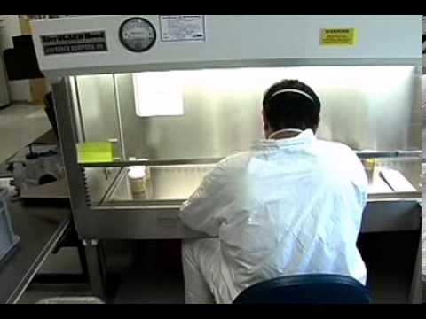 Biotechnology Laboratory Technician Careers