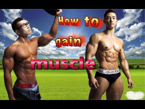 How to gain muscle for 2017