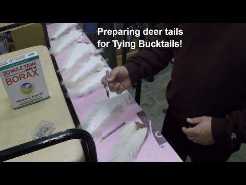 Preparing a Deer tail to tie a Bucktail