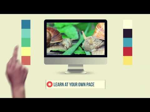 Homeschool Curriculum Online Course Sneak Peek at Brand New Christian Curriculum