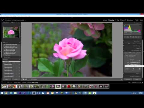 How To Get Started With Adobe Lightroom 5