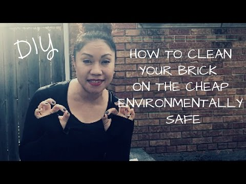 DIY: How to clean your Brick-Concrete on the Cheap - Environmentally Safe