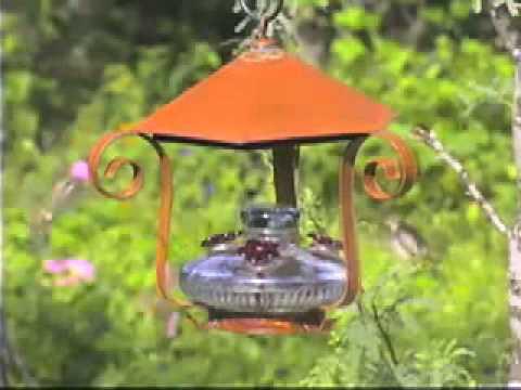 Shelter Hummingbird Feeder - Wind & Weather