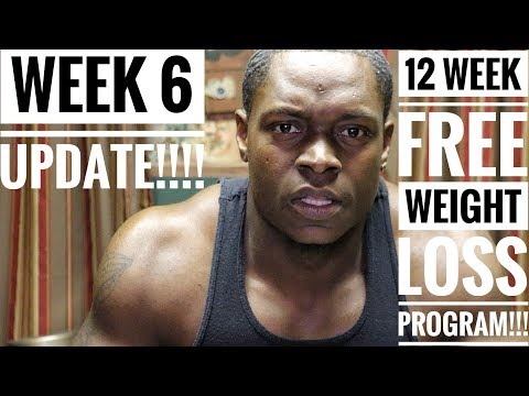 The Perfect Diet For Weight Loss!!! Week 6 Update!!!!
