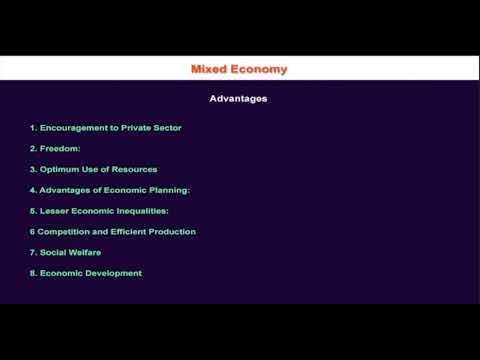1.10.10 Advantages of Mixed Economic System