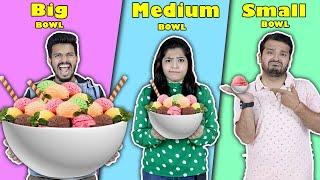 Big Vs Medium Vs Small BOWL Challenge | Food Challenge India | Hungry Birds