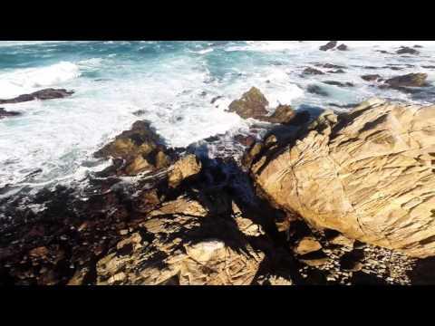 17 Mile Drive - Monterey
