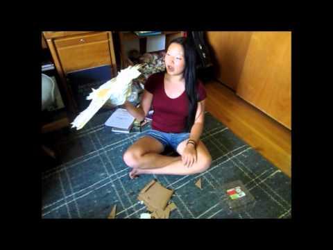 How to Make a Paper Mache Bird + Conserve