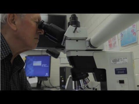 Using Droplet Digital™ PCR to Diagnose Leukemia