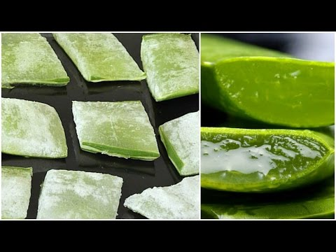 ALOE VERA ICE CUBES FOR SKIN! │DIY GET RID OF ACNE, LARGE PORES, DARK SPOTS, SKIN PROBLEMS!