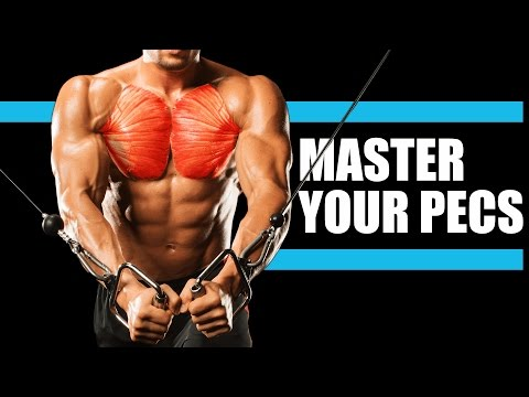Muscle Masterclass: CHEST