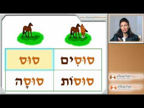 Learn Biblical Hebrew - lesson 6 - Nouns and Adjectives | by eTeacherBiblical.com