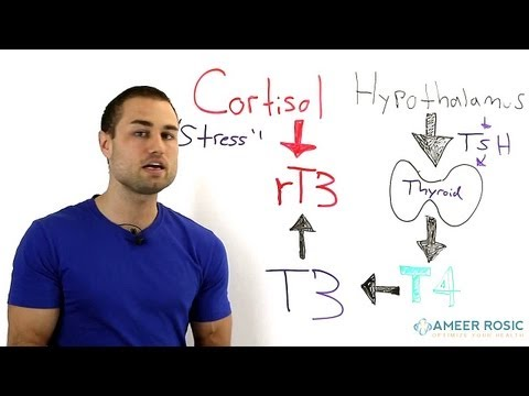 Thyroid problems Stress and Thyroid