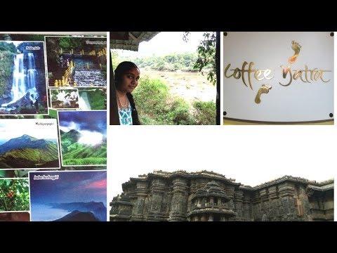 Chikmagalur Final Day  Coffee Museum   Belur Temple   Halibedu