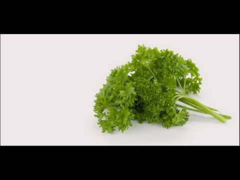 Parsley Is Natural Treatment For Dry Hair Other Benefits How It Works