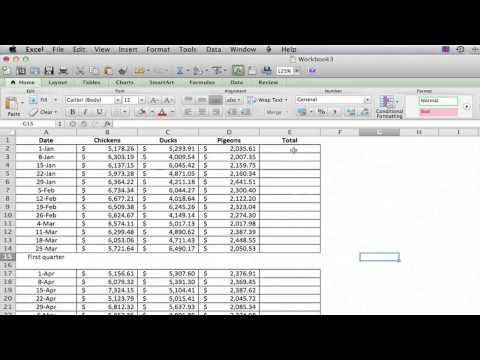 How to Get Total Payments in Excel : Using Excel
