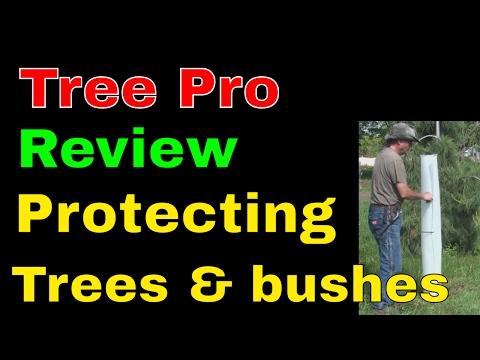 TreePro Tree tubes protecting perennial bushes and trees Tree guards