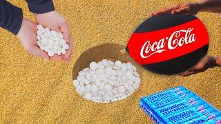 Experiment Cola Cola, Pepsi,Sprite, vs Mentos Underground