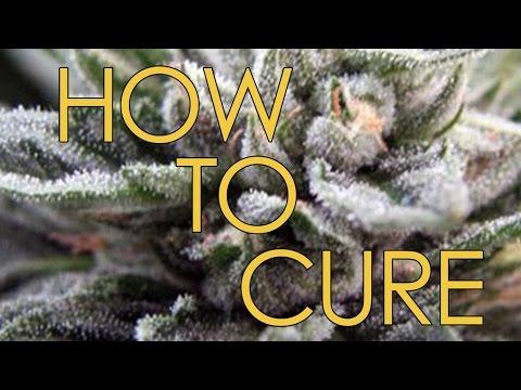 How to Cure Marijuana