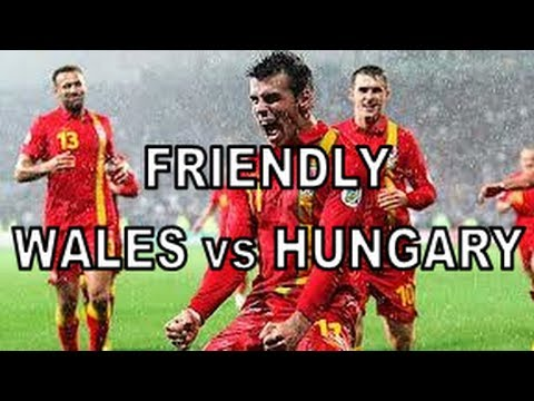 Football Manager 2013: International Management - Wales vs Hungary
