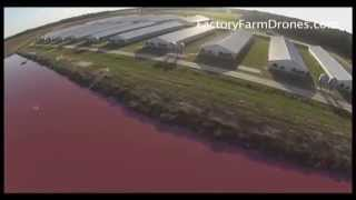 Man uses drones to expose one of America