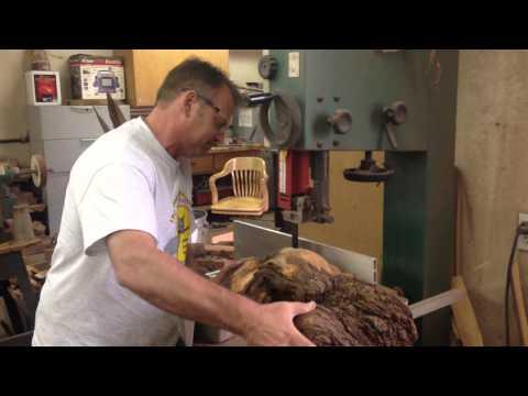 Cutting Yellow Cedar Burl