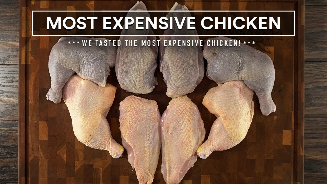 We tasted the MOST EXPENSIVE CHICKEN I could find!