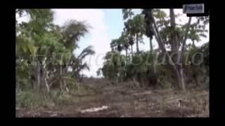 Taariikhda soomaalida 1 (Hiiraan landscape) - The Most