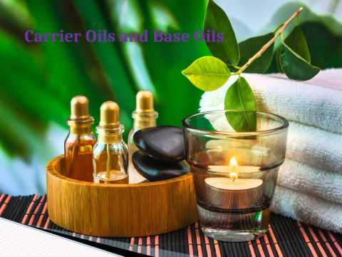 pure essential oils wholesale india