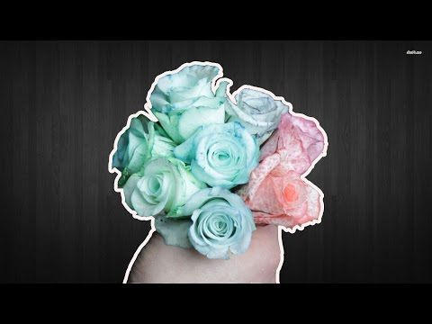 AWESOME COLORED FLOWERS EXPERIMENT ROSES IN RAINBOW COLORS FOR PRESENT