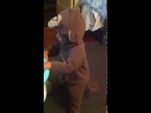15 month old dancing in his monkey costume