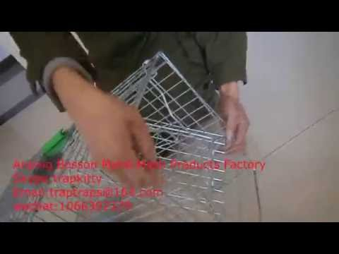 How to Bait a Rabbit Trap/animal trap