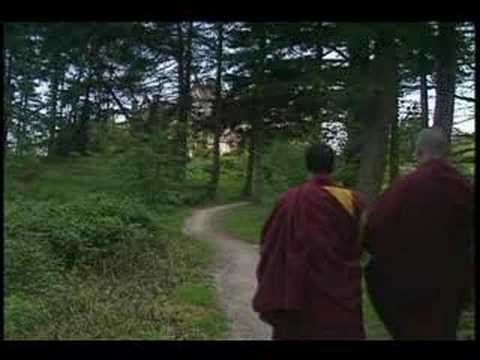 THE GUIDE - FOLLOWING THE BUDDHIST PATH
