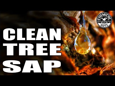 How To Remove Tree Sap With Car Wax - Butter Wet Wax